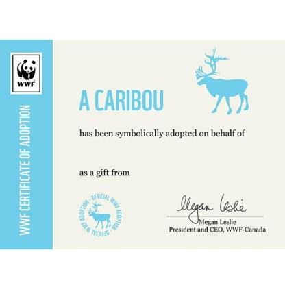 Wildlife Adoption from WWF Foundation